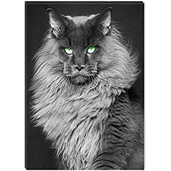 Amazon Com Startonight Canvas Wall Art Black And White Abstract Cat