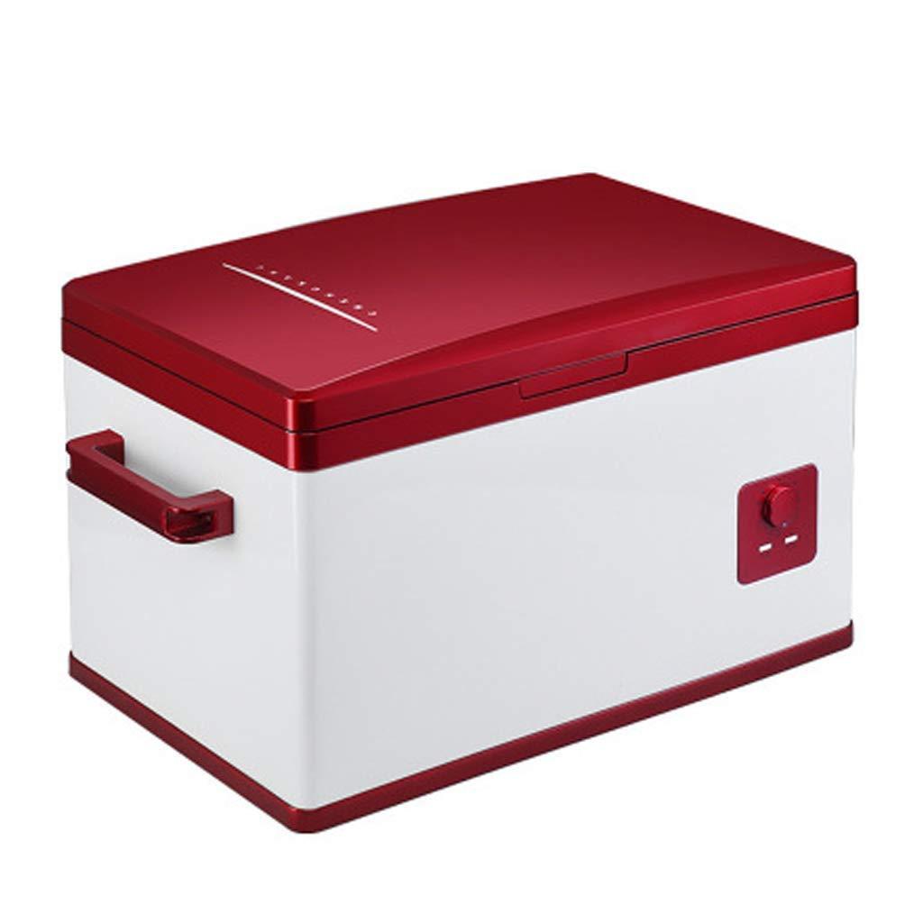 WYJW Ice Refrigerador para automóvil Mini 25L Refrigerador pequeño ...