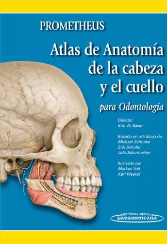 Descargar Libro Atlas De Anatomía De La Cabeza Y El Cuello Para Odontólogos Eric Baker