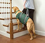 Cheap Orvis Dog Lift, X Large