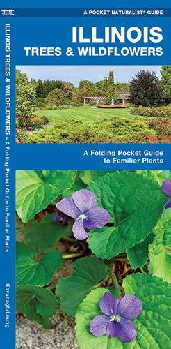 Illinois Trees & Wildflowers: A Folding Pocket Guide to Familiar Species (A Pocket Naturalist - Waterford In Stores