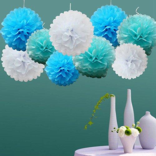 - 18pcs Tissue Hanging Paper Pom-poms, Flower Ball Wedding Party Outdoor Decoration Premium Tissue Paper Pom Pom Flowers Craft Kit(Blue & White)