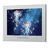 Soulaca 21.5inch Mirror Bathroom Salon LED Waterproof TV M215FN