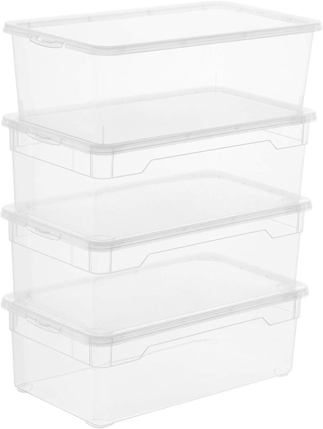 Sundis Rotho 6334390000 - Caja de almacenamiento con tapa, color transparente, plástico, paquete de 4