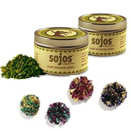 HDP Value Pack Sojos Certified Organic Catnip and Mylar Balls Size:Value Pack