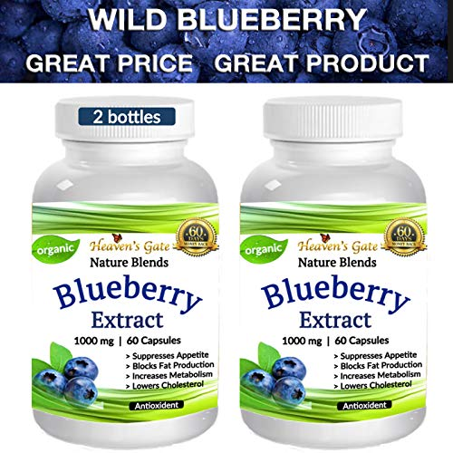 2 Wild Blueberry Extract - Made from Organic Berries - Powerful Antioxidant - GMO and Gluten Free - 1000 mg Per Serving (1 Capsule) - 120 Capsules (2-4 Months) - Supports Good Vision, Memory & Brain