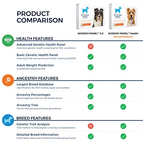 Wisdom Panel 3.0 Canine DNA Test – Dog DNA Test Kit for Breed and Ancestry Information
