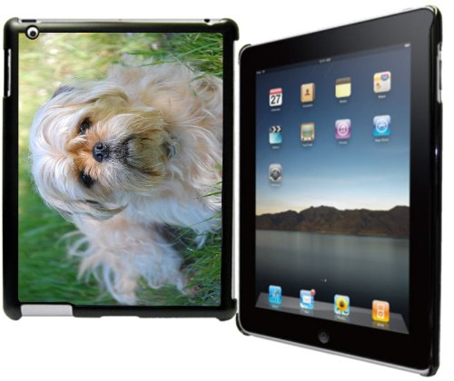 Rikki Knight? Yorkshire Terrier and Pug Mix Design Black Snap on Protective Case for Apple iPad? 2 - The New iPad (3rd Generation) - iPad 4 (Mix Puppy Terrier)
