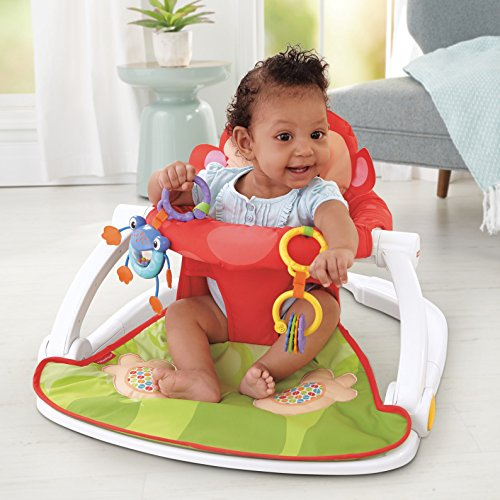 Image of the Fisher-Price Deluxe Sit-Me-Up Floor Seat