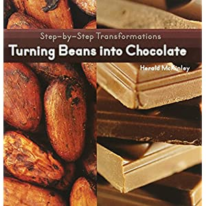 Turning Beans into Chocolate (Step-by-step Transformations)