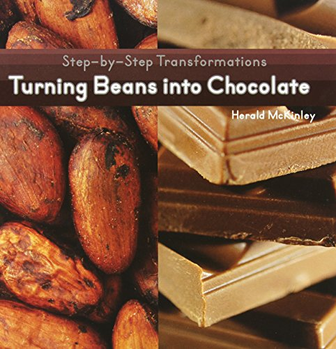 Chocolate Processing Steps