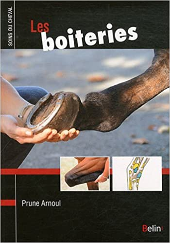 Lire un Les boiteries pdf ebook
