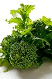 2000 Seeds Heirloom BROCCOLI RAAB Spring Rapini Rabe ORGANIC