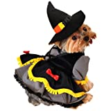 Anit Accessories Scarecrow Witch Dog Costume, Small, 12-Inch