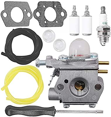 Amazon.com: Saihisday WT-973 - Carburador para cortacésped ...