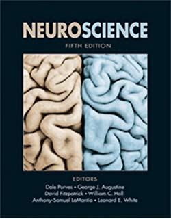 Principles of neural science fifth edition principles of neural neuroscience fifth edition fandeluxe Image collections