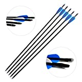 Hunting Archery Fiberglass Arrows Letszhu Target Practice Arrow Shafts with Removable Field Points and 3 inch TPU Vanes for Compound Recurve Bows