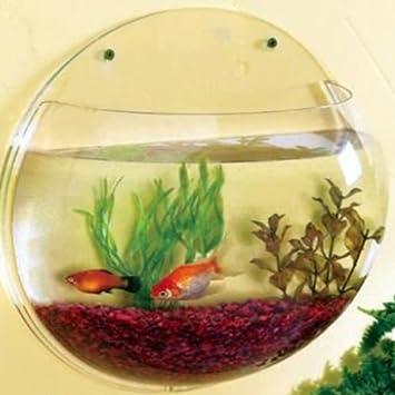 AZIL® 6.7 Litre Wall Mounted Fish Bowl Aquarium Hanging Tank / Plant ...