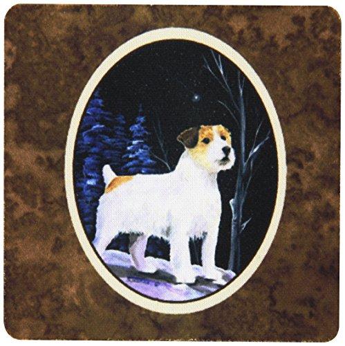 Caroline's Treasures SS8388FC Starry Night Jack Russell Terrier Foam Coasters Set of 4 (Set of 4), 3.5