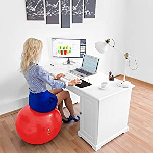 Lazy Monk Exercise Ball Yoga Balance Balls | Fitness Exercise Equipment Set: Professional Core Strength Swiss Stability Anti-burst Tested Ball for Home, Office & Gym with Foot Pump & Workout Guide by Lazy Monk