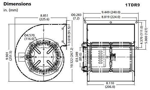 Dayton 1TDR9  Rectangular Permanent Split Capacitor OEM Specialty Blower by Dayton