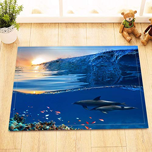 (GoHeBe Underwater Animal Bath Mat Dolphin Small Fish Flying Water Surface Sunrise Bathroom Rugs Flannel Outdoor Indoor Front Door Mat Non-Slip High Absorbent 15.7x23.6 inch)
