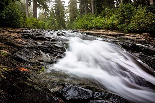 (Pacific Northwest Art Photography Print - Picture of Paradise River Rushing to Narada Falls at Mount Rainier Washington Home Decor 5x7 to 40x60)