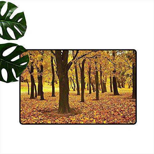 (Anzhutwelve Landscape,Indoor Floor Mats Golden Fallen Leaves Covered Ground Autumn Forest Nature Picture Entrance Rugs W 31