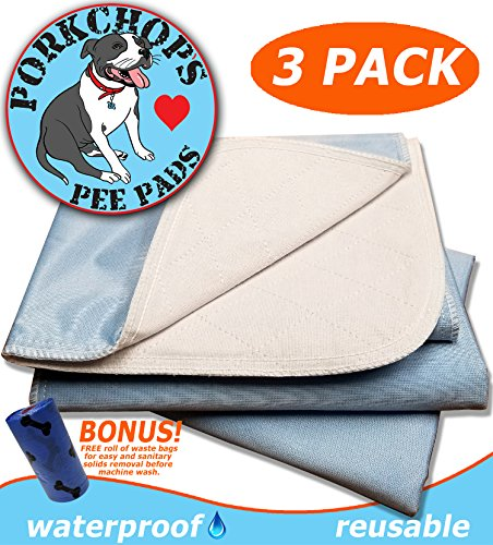 Reusable Housebreaking Pad (PORKCHOP'S Washable Pee Pads for Dogs, Reusable Pet Pee Pads, Reusable Pee Pads for Dogs, Machine Washable, Waterproof (3) PACK LARGE 23x36, Housebreaking, Incontinence, Quality 4 Layer Protection)