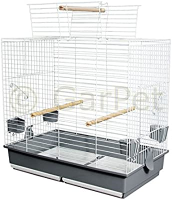 Jaula de pájaro jaula grande periquitos Papagayo libre abierto de ...