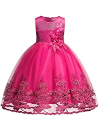 Girl Sleeveless Wedding Party 3D Embroidered Flower Dresses for Kids