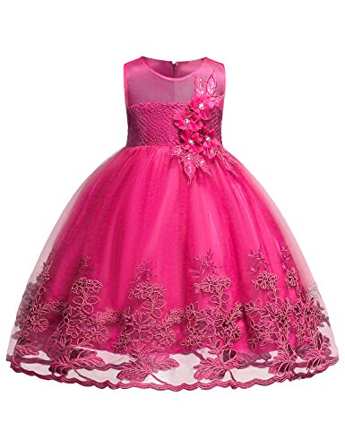 Blevonh Kids Dress Princess Girl Sleeveless National Flag Day Formal Birthday Chiffon Party Dresses 2018 Christmas Kids Lace 3D Flower Wedding Party Dresses Size (140) 9-10 Years Rose Dress