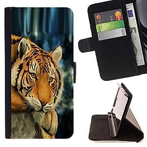BullDog Case - FOR/Apple Iphone 6 PLUS 5.5 / - / tiger sleepy tired feline animal Africa /- Monedero de cuero de la PU Llevar cubierta de la caja con el ID Credit Card Slots Flip funda de cuer