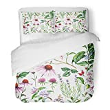 SanChic Duvet Cover Set Watercolor Botanical with Different Plants Repeated Natural Meadow and Medical Echinacea Coffe Decorative Bedding Set with 2 Pillow Shams Full/Queen Size