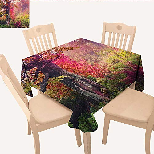 longbuyer Forest Table Cover Fairy Majestic Landscape with Autumn Trees in Forest Natural Garden in Ukraine Square Tablecloth Red Green Brown W 54