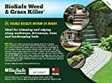 BioSafe Systems 7601-1 BioSafe Weed Control