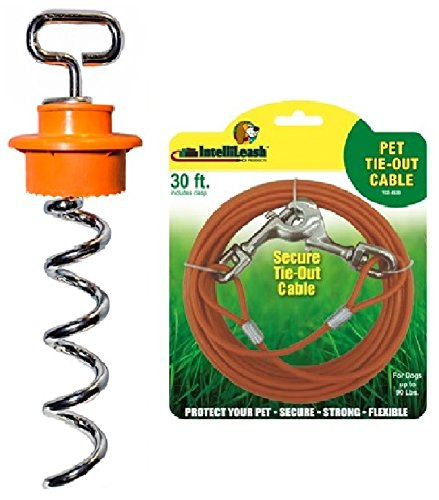 Intellileash Intelli-Stayk Dog Tie-Out with Tie out Cable for Dogs (Intelli-Stayk + 30' Cable for Dogs Up to 90lbs.) by Intellileash