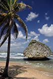 Bathsheba Barbados Journal: 150 page lined notebook/diary