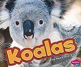 Koalas (Australian Animals)
