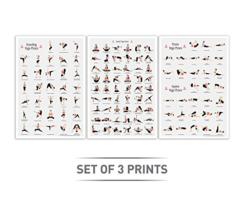 Amazon.com: LAB NO 4 Set of Three Yoga Poses in (12