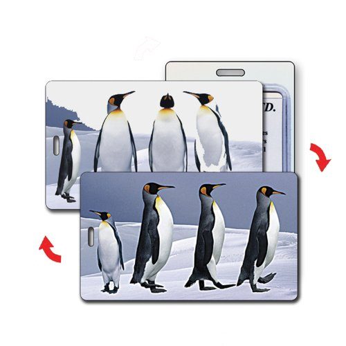 Lenticular Luggage Tag Plastic Loop Flips penguins standing to marching, Bags Central
