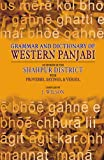 Grammar and Dictionary of Western Panjabi, J. Wilson, 9693517768