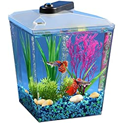 AquaScene 1-Gallon Fish Tank with LED Lighting and Natural Biological Filtration