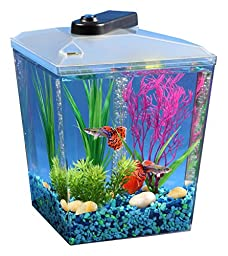 API 1 Gallon Corner View Fish Aquarium With Under Gravel Filter System