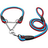 D-4PET Nylon Leash - 2016 Martingale Braided Large Dog Collar with Leash Pet Traction Rope Collar Set for Big Dog Agility Obedience Behavior Training