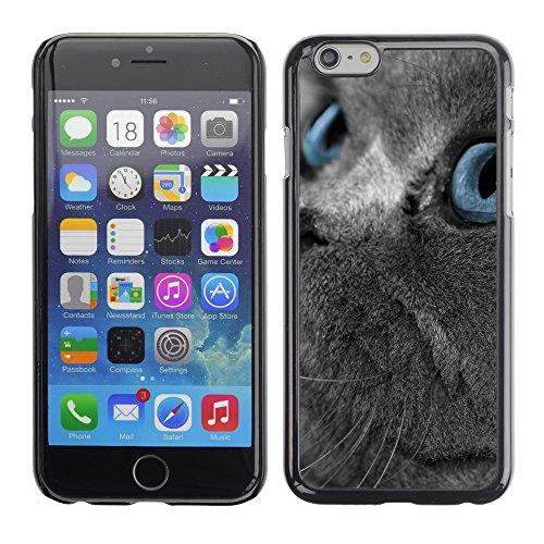"""Premio Sottile Slim Cassa Custodia Case Cover Shell // V00003002 chat bleu yeux // Apple iPhone 6 6S 6G 4.7"""""""