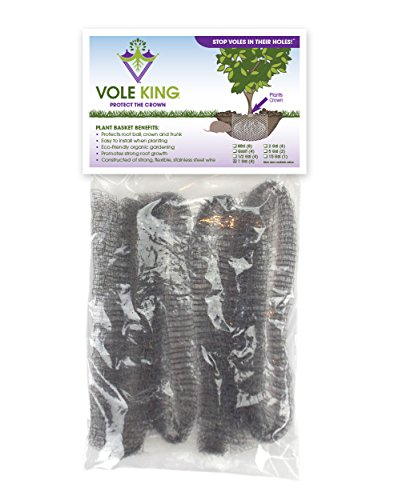 vole-king-plant-basket-protects-the-crown-pack-of-4-1-gallon-baskets