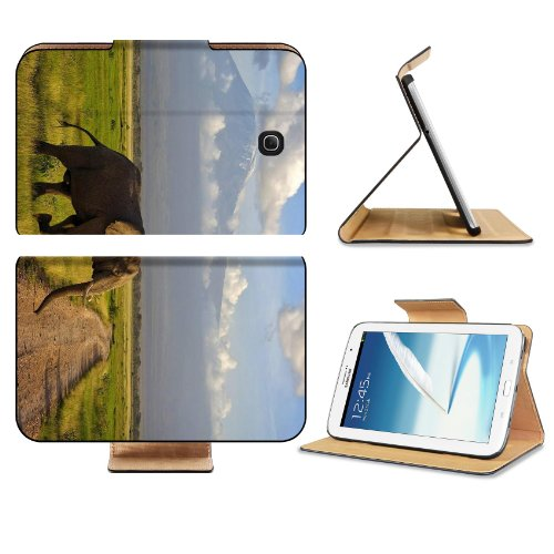 Elephant African Animal Field Mountain Clouds Wildlife Samsung Galaxy Note 8 GT-N5100 GT-N5110 GT-N5120 Flip Case Stand Magnetic Cover Open Ports Customized Made to Order Support Ready Premium Deluxe Pu Leather 8 7/16 Inch (215mm) X 5 11/16 Inch (145mm) X 11/16 Inch (17mm) Liil Note 8 cover Professional Note8 Cases Note_8 Eight Accessories Graphic Background Covers Designed Model Folio Sleeve HD Template Designed Wallpaper Photo Jacket Wifi Protector Tablet