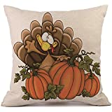"Throw Pillow Covers,HP95(TM) 18""x18"" Pillow Cases Linen Sofa Cushion Cover Home Decor for Thanksgiving Halloween Christmas (H)"
