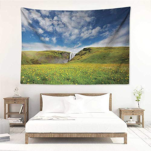 alisos Waterfall,Wall Decor Tapestry Waterfall Cascade Landscape with Daisies in The Meadow Nature Themed Print 93W x 70L Inch Tapestry Wallpaper Home Decor Green Blue White